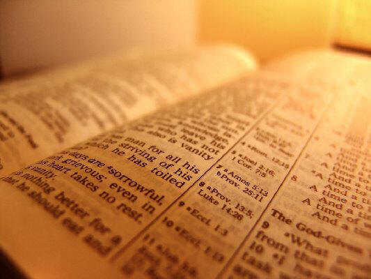Bible page photo