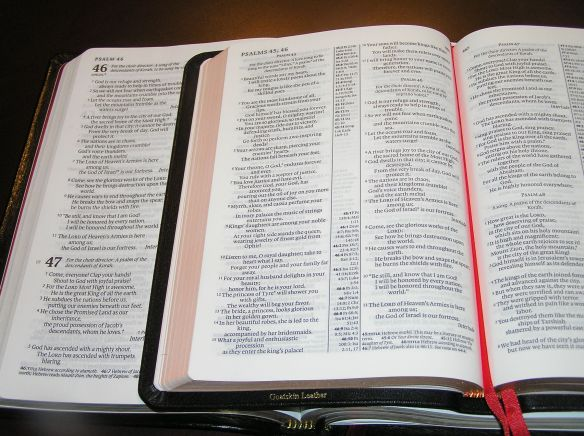 NLT Slimline Reference Bible (left) vs. Pitt Minion NLT (right)