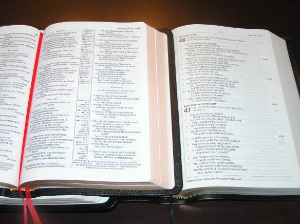 Pitt Minion NLT (left) vs. ESV Personal Reference Bible (right)